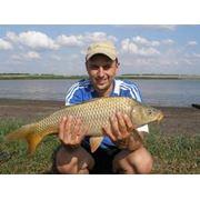 Рыбалка Рыбалка Киев Рыбалка Киевская область фото