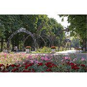 Обзорная экскурсия по Донецку фото