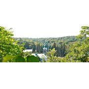 Центральные парки Киева фото