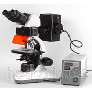 MC 300X FS - Флуоресцентный микроскоп фото