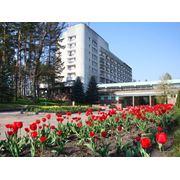 Гостиничные номера: апартаменты. фото