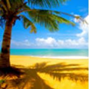 Пляжные туры (отдых на море) фото