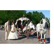 Прокат свадебных карет фото