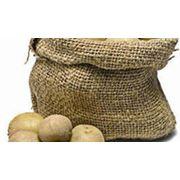 Картофель с доставкой по Украине фото