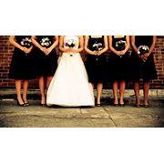 Проведение свадеб фото
