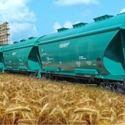 Перевозки зерна внутренние в вагонах-зерновозах по Украине фото