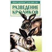 Книги о кроликах. Разведение кроликов. фото
