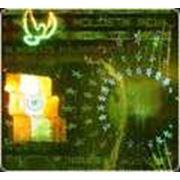 Термоголограммы фото