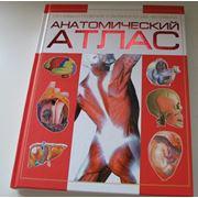 Анатомический атлас изд.Харвест фото