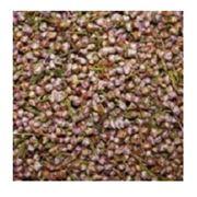 Вереск (соцветия с травой) Сухоцветы водорастворимая бумага и другие декоративные элементы для изготовления мыла. фото