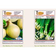 Семена лука купить в Украине Киеве цена фото
