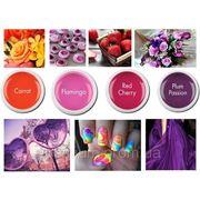 Набор цветных гелей летняя коллекция фото