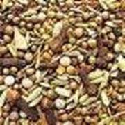 Семена для овощеводства оптом собственного производства Одесская область Украина