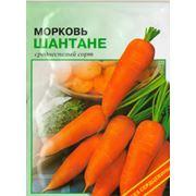 Семена морковь Шантане семена моркови оптом купить семена семена.