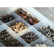 Семена оптом и в розницу — пакетированные и весовые семена отечественных и зарубежных производителей