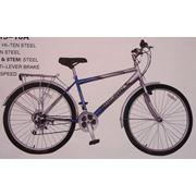 Велосипеды Pigeon FP415-10A фото