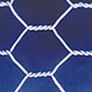 Сетки проволочные тканые фильтровые. Сетка проволочная крученая с шестиугольными ячейками Манье фото