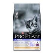 Корм Pro Plan Junior для котят с курицей и рисом, 0,4 кг фото