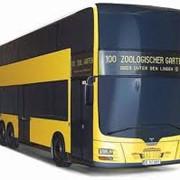 Автобусы различных марок фото