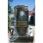 Памятники из гранита Жтомир (Образцы №272) фото