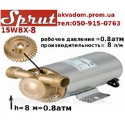 Спрут 15WBX-8 ( насос для повышения давления =0.8 атм) фото