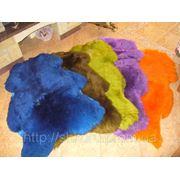 Шкура овцы яркого цвета фотография