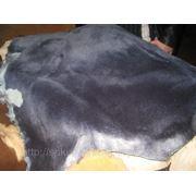 Обувная овчина (одежная) продажа фото