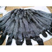 Шкуры чернобурки (фабричная выделка) фото