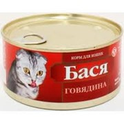 Корм для кошек фото
