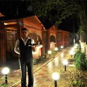 Летняя площадка ресторана Бакинский двор фото