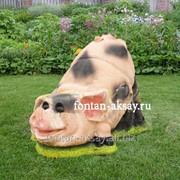 Свинка на пеньке фото