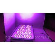 Sun.Win Серии, 366 Светодиодные лампы для теплиц,оранжерей, зимних садов, гидропонных систем и любителей. Фитолампы фото