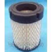 Воздушный фильтр CH440 Kohler фото