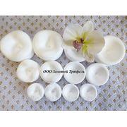 Набор форм для формирования и сушки цветов и листьев (12 шт) фото