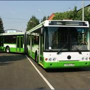 Автобусы городские ЛиАЗ-6213 фото