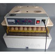 Инкубатор автоматический JANOEL на 96 куриных яиц. Электронный термоконтроль. фото