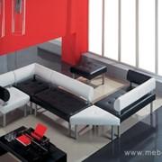 Офисный диван Бизнес Мебель фото