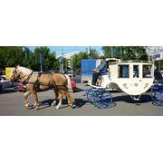 Лошади на свадьбу Москва фото