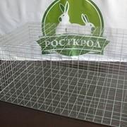 Клетка для содержания кроликов фото