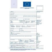 Заполнение шенген анкеты фото