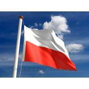 Польская шенгенская виза фото