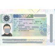 Польська робоча віза (D) 180\360 (особиста подача) фото