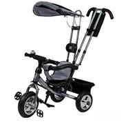 Велосипед детский 3-х колесный Mini Trike (серебристый), цена фото