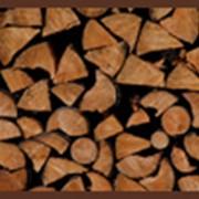 Дубовые дрова фото