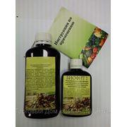 Микробиологический препарат Биофит №2 (канистра 5,0л) фото