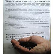 Екологічні добрива в Херсоні де купити біогумус органічні добрива Херсон.