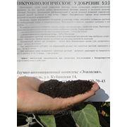 Экологические удобрения в Полтаве где купить биогумус органические удобрения Полтава.