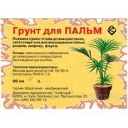Грунт для пальм (4 л. ) фото
