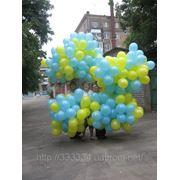 Продажа латексных шаров