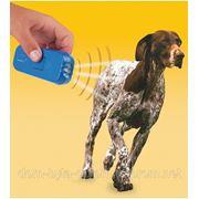 Отпугиватель собак ультрозвуком Pet Trainer (Пет Трейнер) фото
